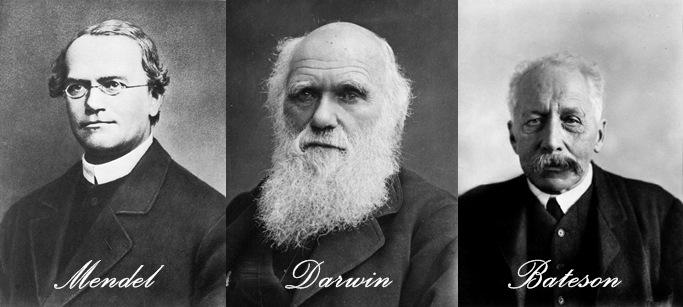 Генът - Приказка за най-важната научна сага в историята